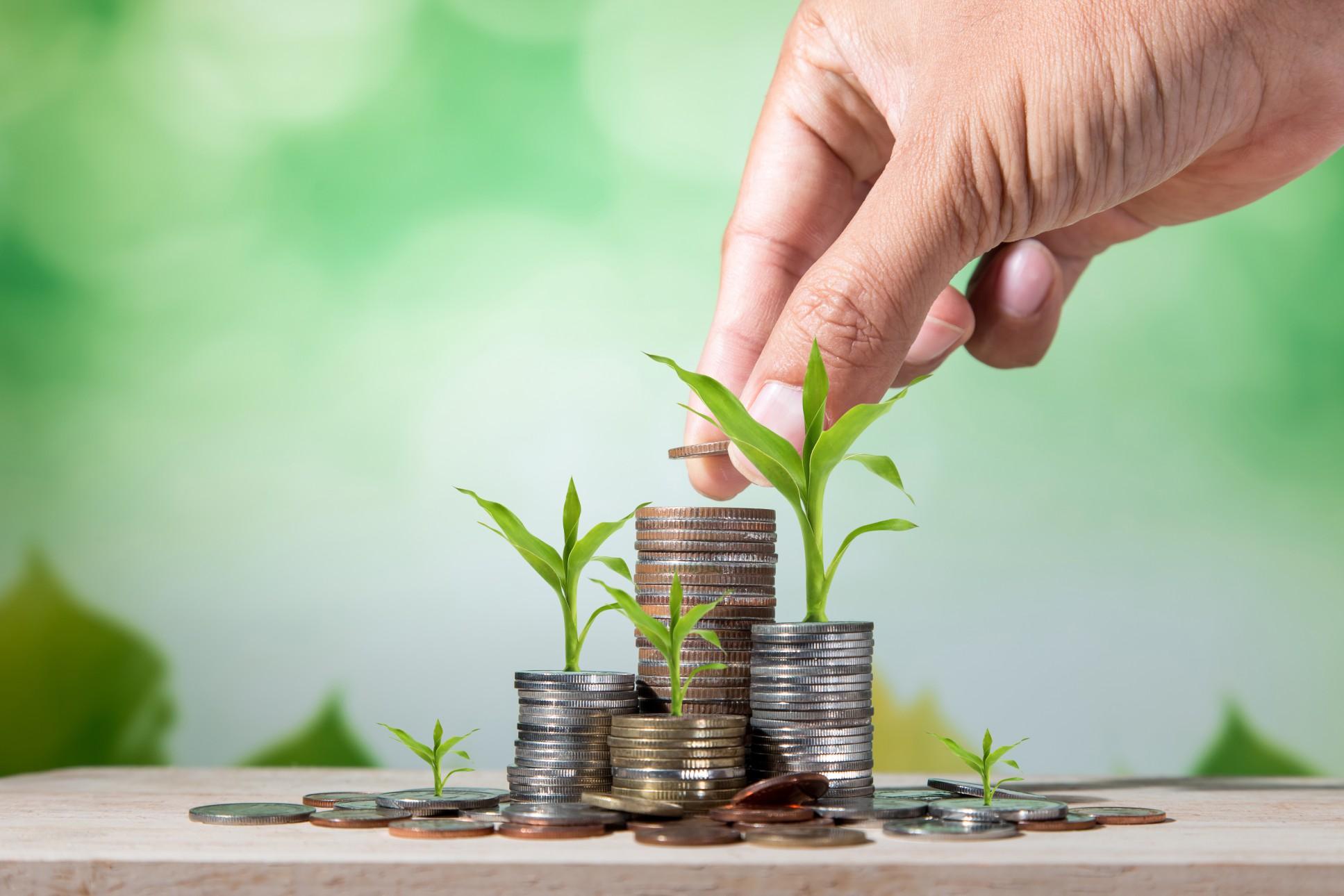 Frågor att ställa sig inför en crowdfunding-kampanj