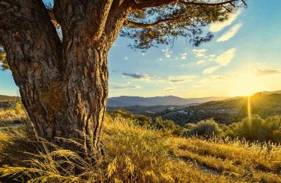 De bästa lederna att vandra i Andalusien