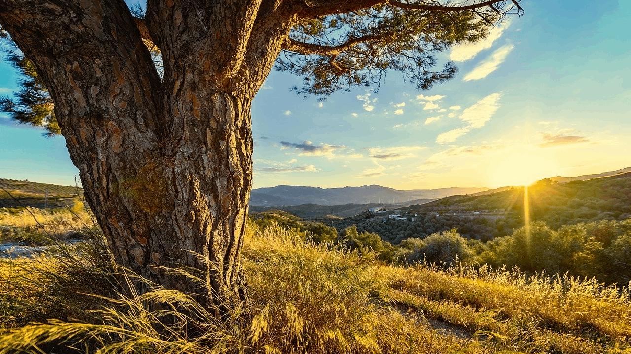 vandring-i-andalusien | Biztrends