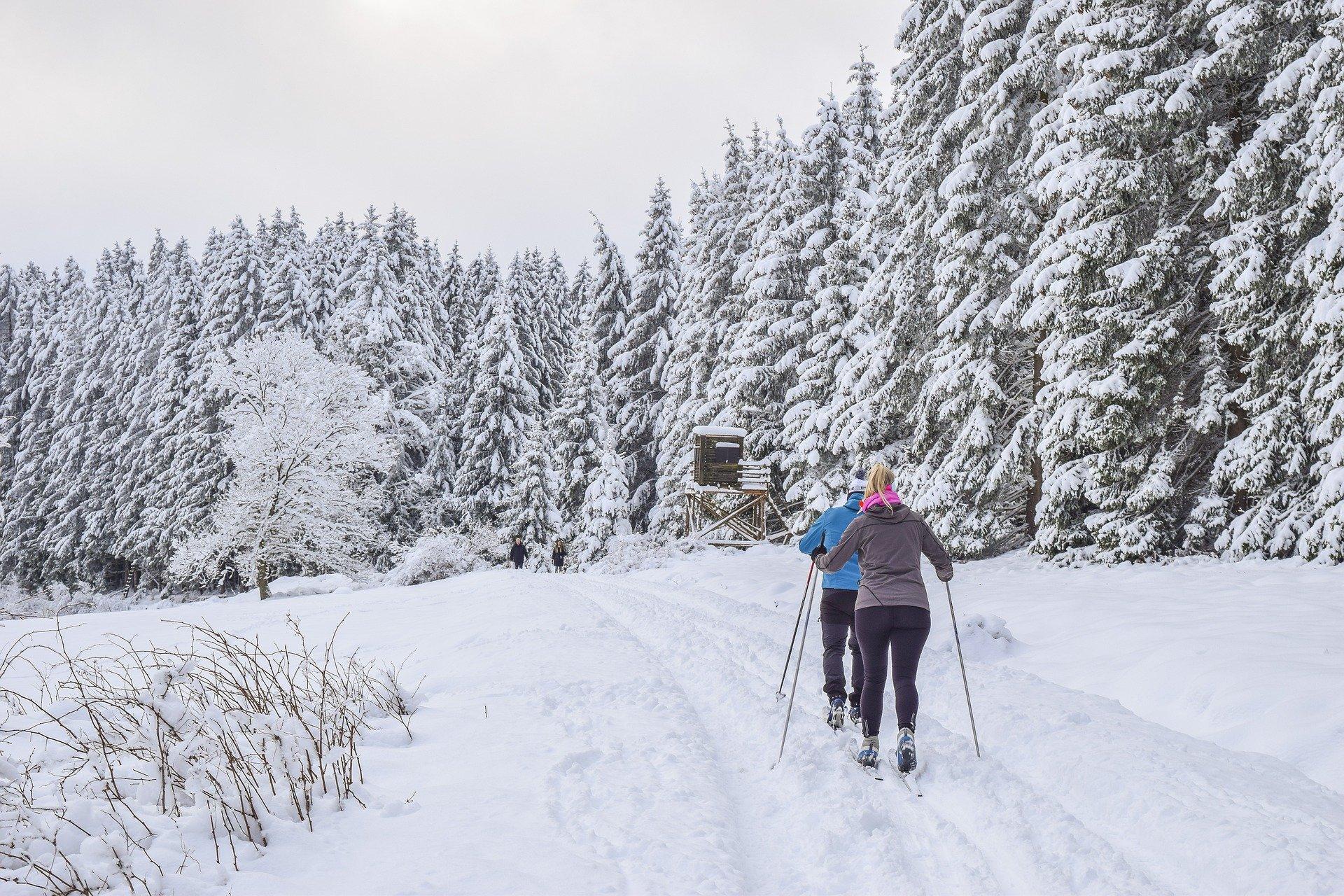 människor skidåkning- Skidkonferens